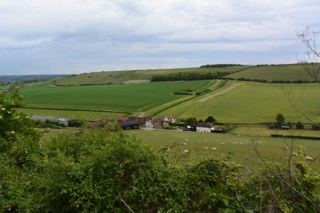 On Kingstanding Hill, a candidate for the site of the Battle of Ashdown, looking north over Starveall Farm and Moulsford Bottom, across to Moulsford Downs.