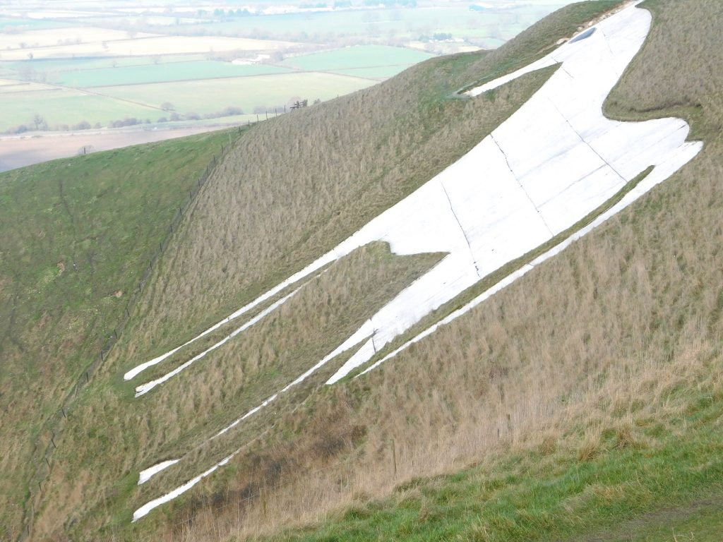 The White Horse above Westbury, Wiltshire.