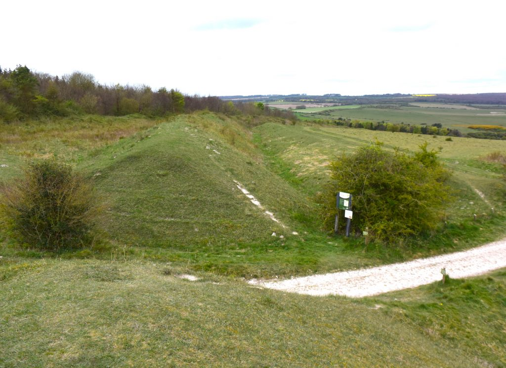 Bokerley Ditch, Martin Down, Hampshire.