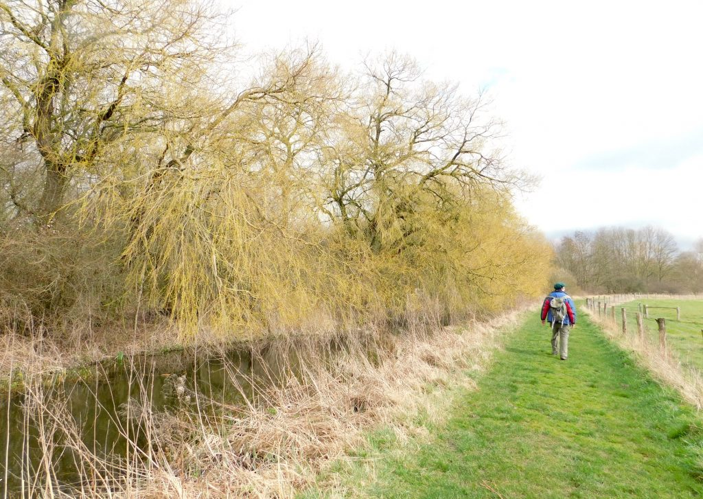 a stretch of the original River Lea, just north of Waltham Abbey